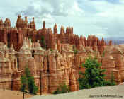 Hoodoos - Bryce Canyon National Park