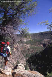 hiking in the gila wilderness area new mexico