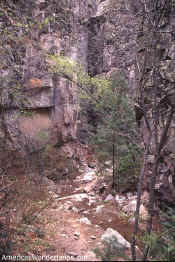 little bear canyon photo gila wilderness new mexico